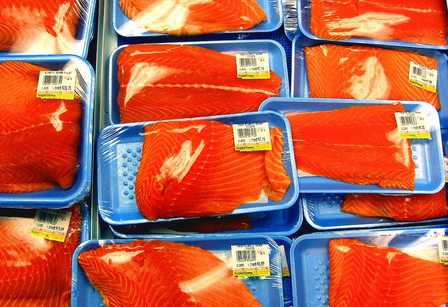Washington lawmakers will hear a bill to label genetically engineered salmon. The proposed bill would also ban transgenic salmon production in the state.