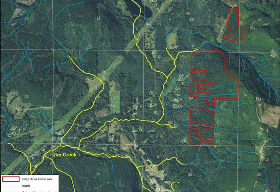 DNR's proposed Riley Rotor timber sale in red, with salmon streams in yellow, near Oso, Wash.