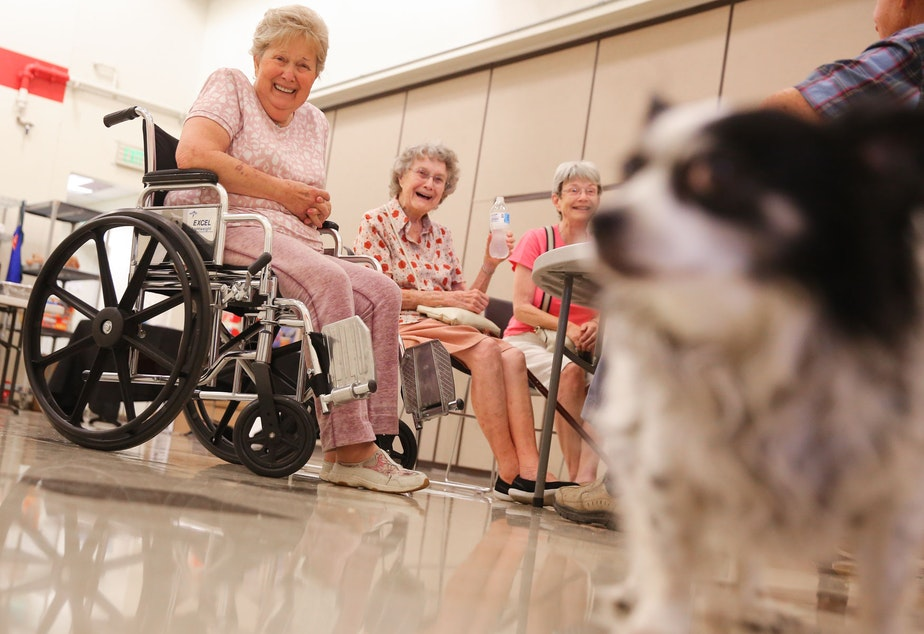 caption: Lilly Ann Sweeney, left, Thelma Davis, and Carolyn Embry, laugh at Sweeney's long-haired chihuahua, Scooter, as they take refuge from the heat in the Salvation Army White Center Community Center Cooling Center, Monday afternoon. Davis, who is 98 and moved to Seattle in 1959, said that she had never seen this high of temperatures in the region. The National Weather Service recorded 108 degrees in SeaTac on Monday, setting an all-time record for the area.