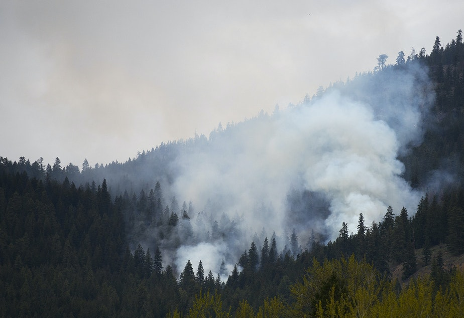 caption: A prescribed burn is shown on Monday, April 22, 2019, south of Mazama, Washington.