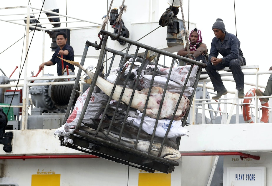 caption: 2014 file photo: Workers in Indonesia load fish onto a cargo ship bound for Thailand. Seafood caught by slaves mixes in with other fish at a number of sites in Thailand.