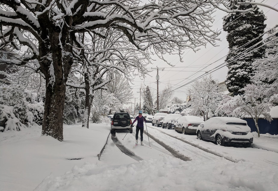 Skiing in Seattle's Wallingford neighborhood on Saturday, Feb. 9, 2019.