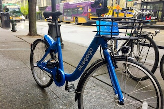 A pilot phase for bluegogo could begin as early as July.