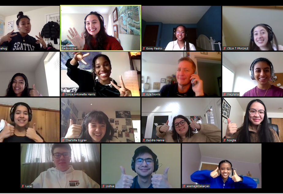 caption: Participants in RadioActive's 2020 Advanced Producers Workshop during an online meeting.