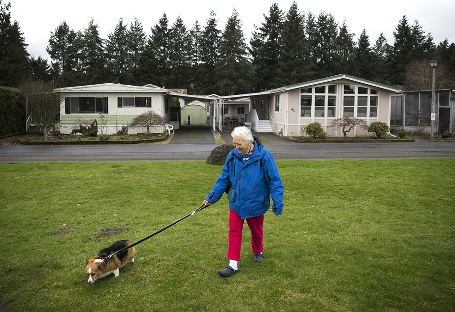 caption: Audrey Behrenhoff walks her dog Emma in front of her home in Redmond last week, at Friendly Village-55 Plus Park, recently purchased by King County Housing Authority. Behrenhoff, 80, has lived in three different mobile homes at Friendly Village.