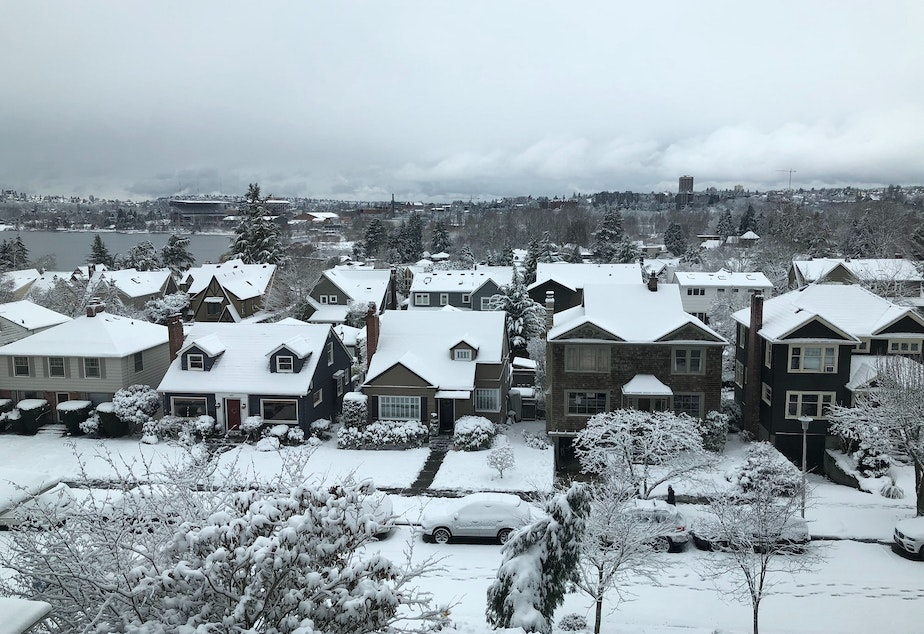 Seattle's Laurelhurst neighborhood under snow on Saturday, Feb. 9, 2019.