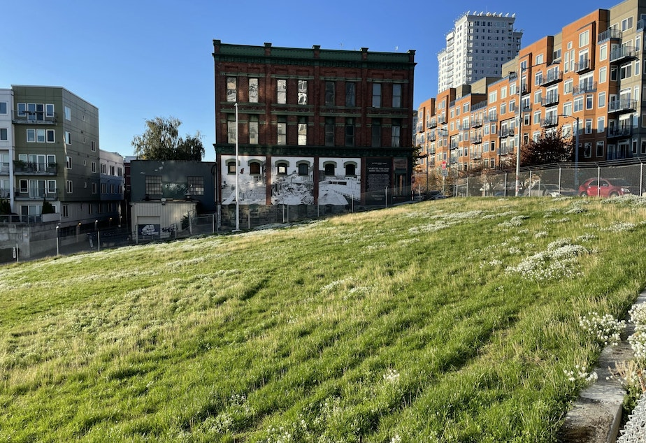caption: Potential site for a downtown elementary school in Seattle's Belltown neighborhood