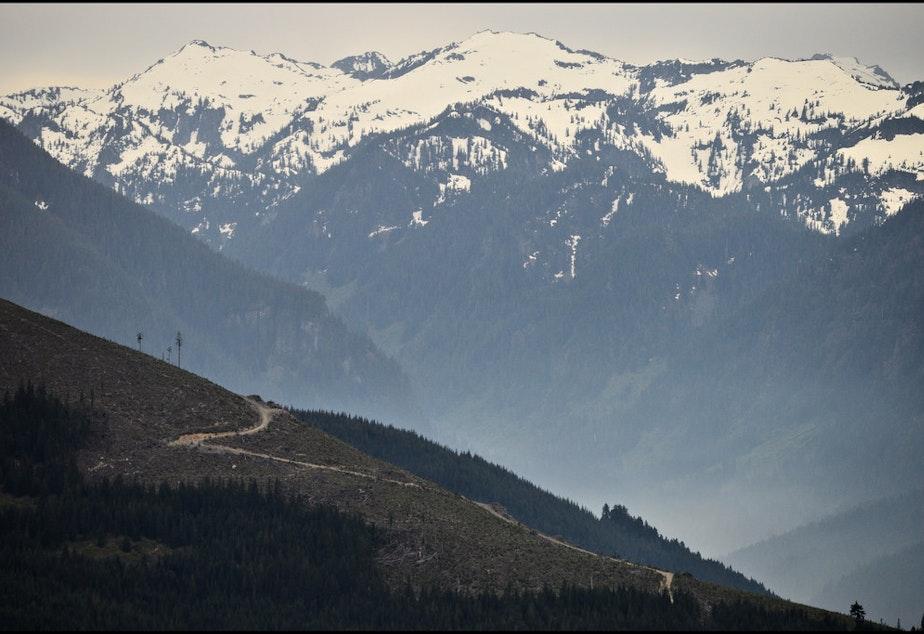 caption: Forest lands near Skykomish, Washington.