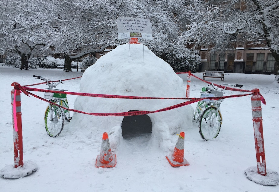 An igloo on the University of Washington campus on Saturday, Feb. 9, 2019.