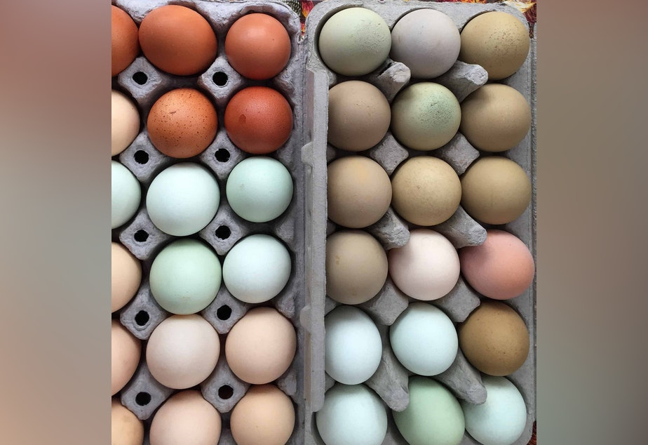 Fresh eggs from farmers markets are more nutritious in summer, when hens have more access to bugs and greens.