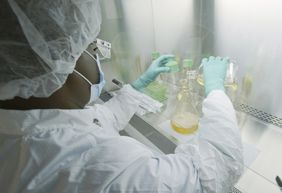 caption: An Eli Lilly researcher tests possible COVID-19 antibodies in a company laboratory in Indianapolis.