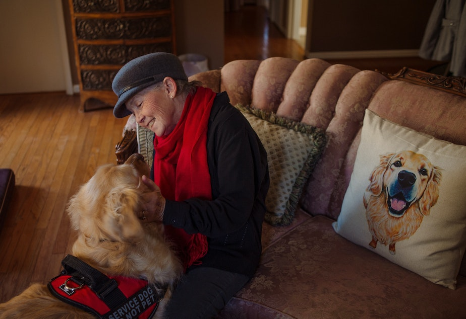 caption: Peggy Gibson sits in her living room with her service dog, Rocky, in West Jefferson, N.C., last November. Gibson says Rocky, a diabetic alert dog, isn't able to work well in public.