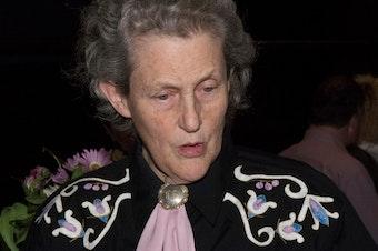 Dr. Temple Grandin at the University of Washington