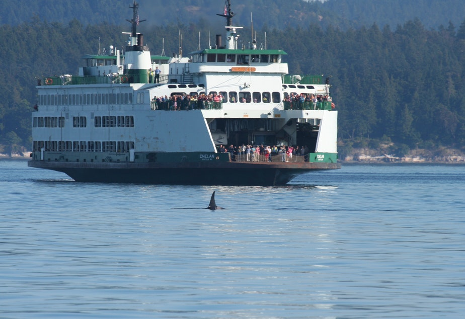 Washington State Ferry passengers watch an orca en route to Canada from Friday Harbor in 2007.