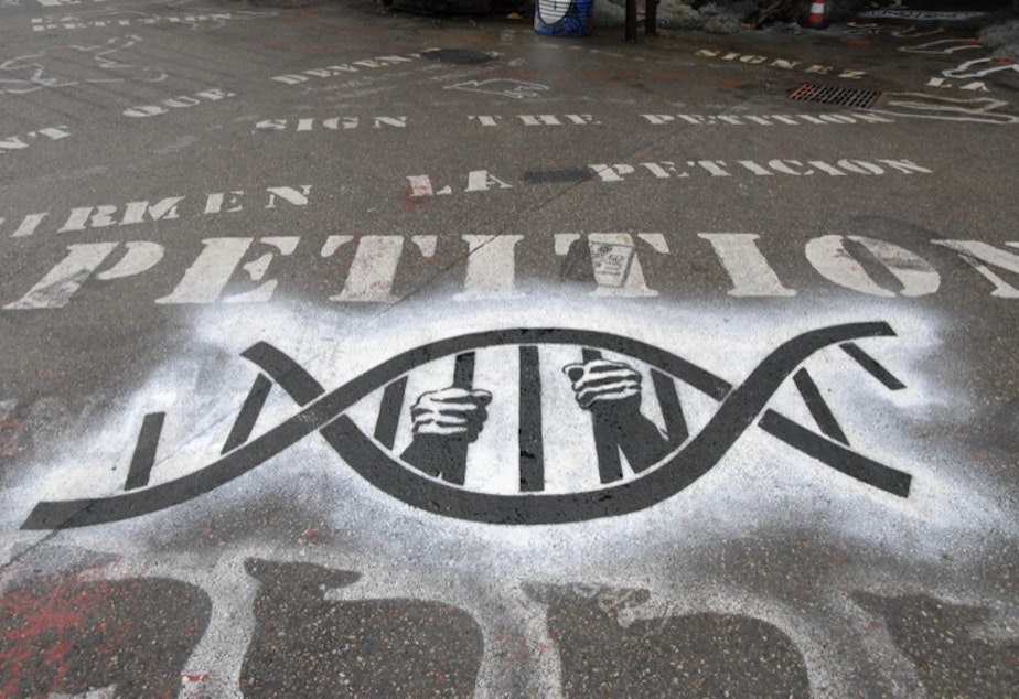 caption: Hands hold a DNA molecule whose bars have been formed into a cage.