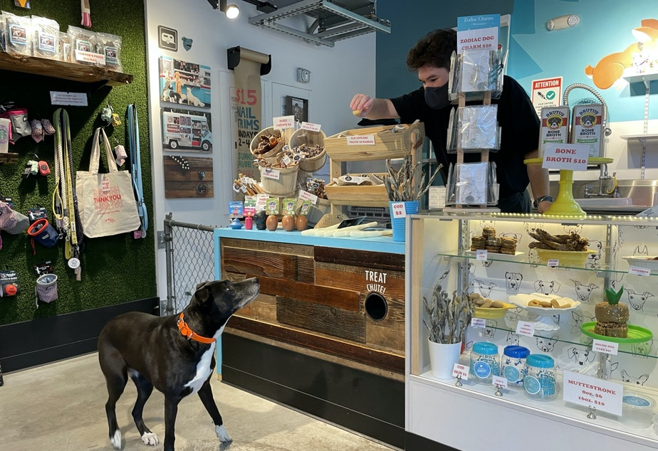 caption: The Seattle Barkery has enjoyed 17 months of free rent from Amazon during the pandemic, and is currently paying partial rent, according to its owner Dawn Ford.