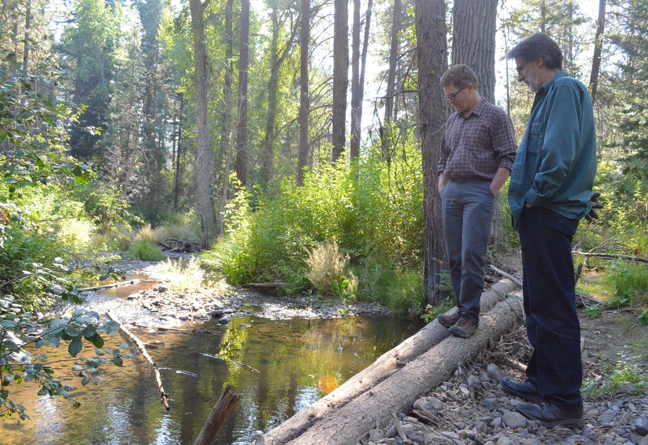 caption: Scott Nicolai, a Yakama Nation habitat biologist, and Dave Morrow, a local landowner, observe juvenile fish in the stream they restored together.