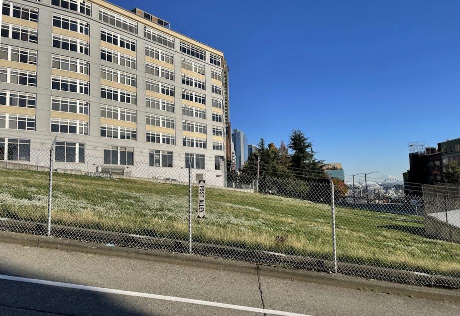 caption: Potential downtown school site in Seattle's Belltown neighborhood