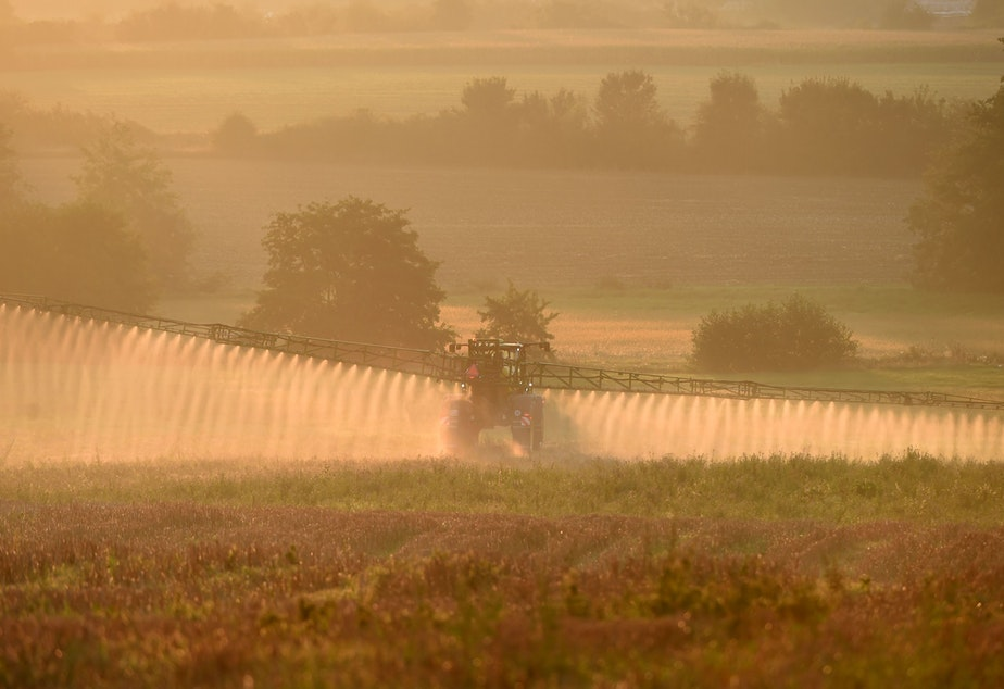 caption: Bayer says a settlement worth more than $10 billion will resolve most of the roughly 125,000 claims the company currently faces over its Roundup product. Here, a farmer sprays the glyphosate herbicide in northwestern France in September.