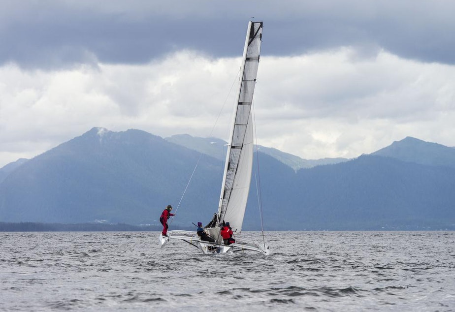 caption: Team Elsie Piddock sails up Nichols Passage south of Ketchikan on the way to winning the Race to Alaska.