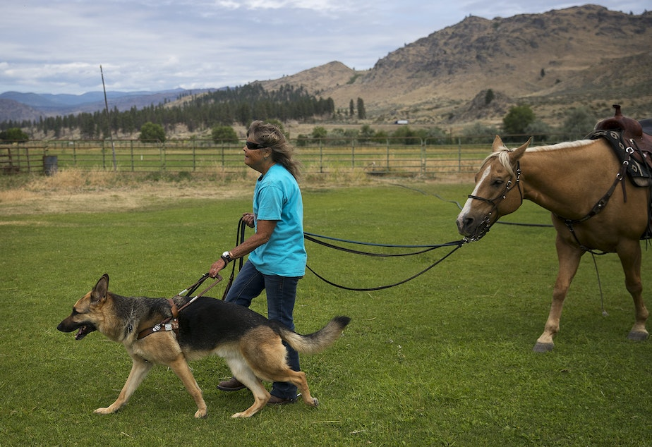 caption: Julie Hensley walks with her seeing eye dog, Fonzie, a 7-year-old german shepherd, and her horse, Hot Rod, after riding in her arena, on Monday, July 15, 2019, at her home in Brewster.