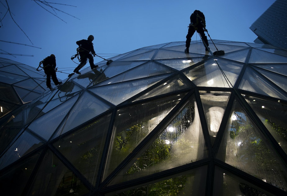 ABM employees wash the Spheres on Thursday, January 24, 2019, in  Seattle. KUOW Photo/Megan Farmer