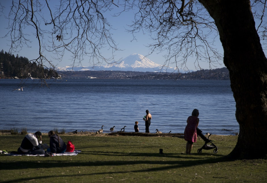 caption: Mt. Rainier is seen from Seward Park on Monday, March 18, 2019, on Lake Washington in Seattle.