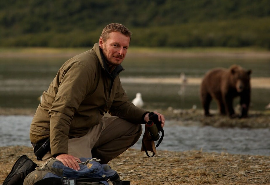 Host Chris Morgan among the bears he loves on the Alaska Peninsula - one of the densest brown bear populations on earth. Here the bears seem to extend their social tolerance of each other to people as well.