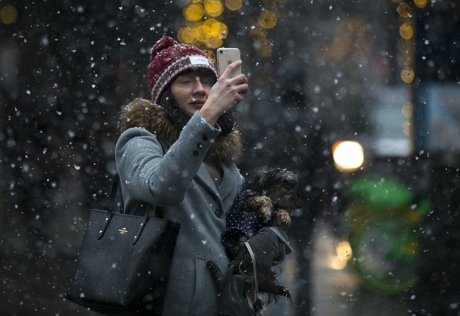 Magda Plocinska takes a picture of the falling snow while holding her dog Taily on Friday, February 8, 2019, on 1st Avenue in Seattle.