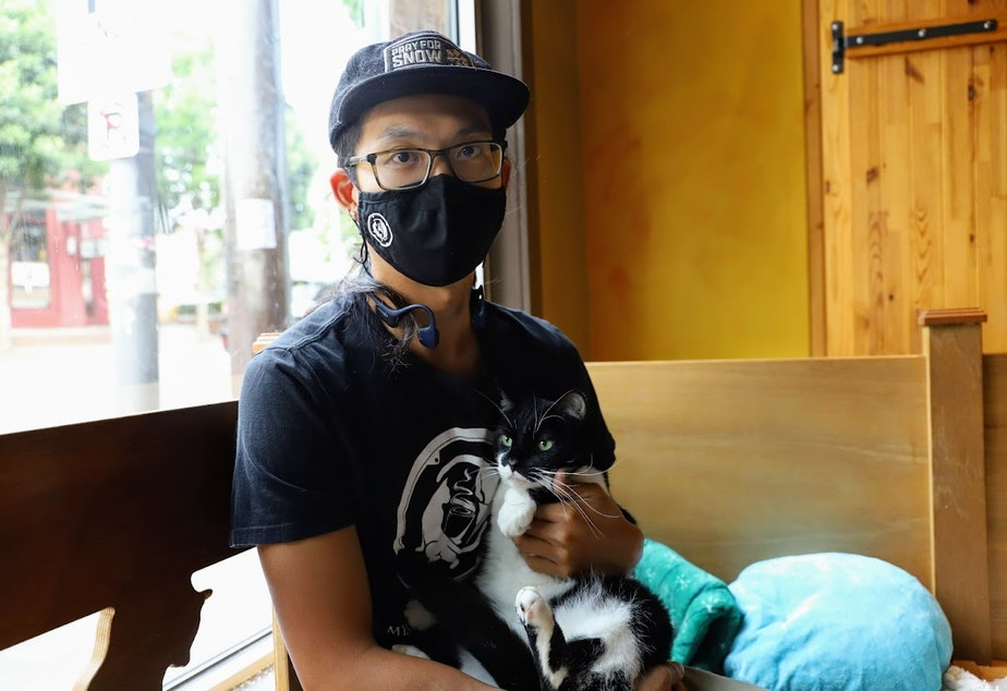 Caption: Andrew Hsieh, co-founder of Seattle Meotropolitan Cafe, cradling Robin, one of nine resident cats at Wallingford Cat Lounge.