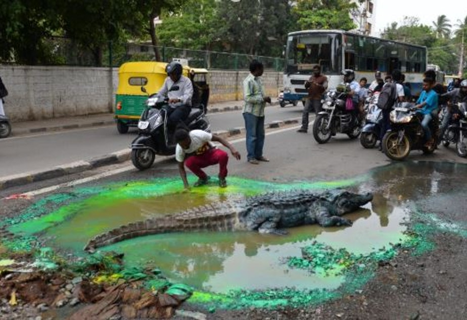 Artist Baadal Nanjundaswamy in Bangalore India makes art out of potholes to bring attention to the terrible condition of the roads.