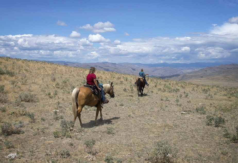 caption: Julie Hensley, left, and Sue Robbins ride their horses, Hot Rod and Mocha, near the ranch where Julie grew up, on Tuesday, July 16, 2019, near Brewster.
