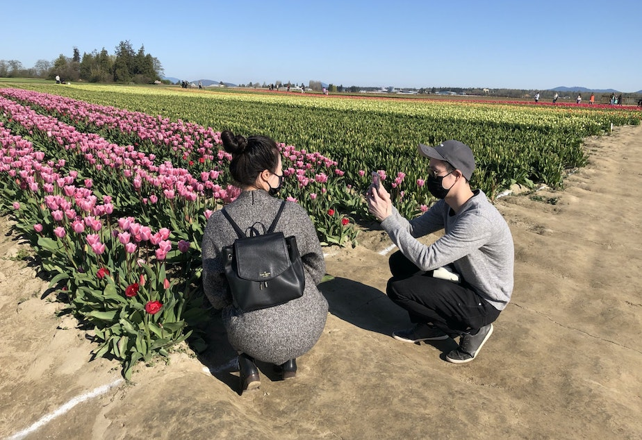 caption: Caroline and Jeremy Leung from Seattle take photos of each other at TulipTown tulip farm near Mount Vernon, Washington in April, 2021.