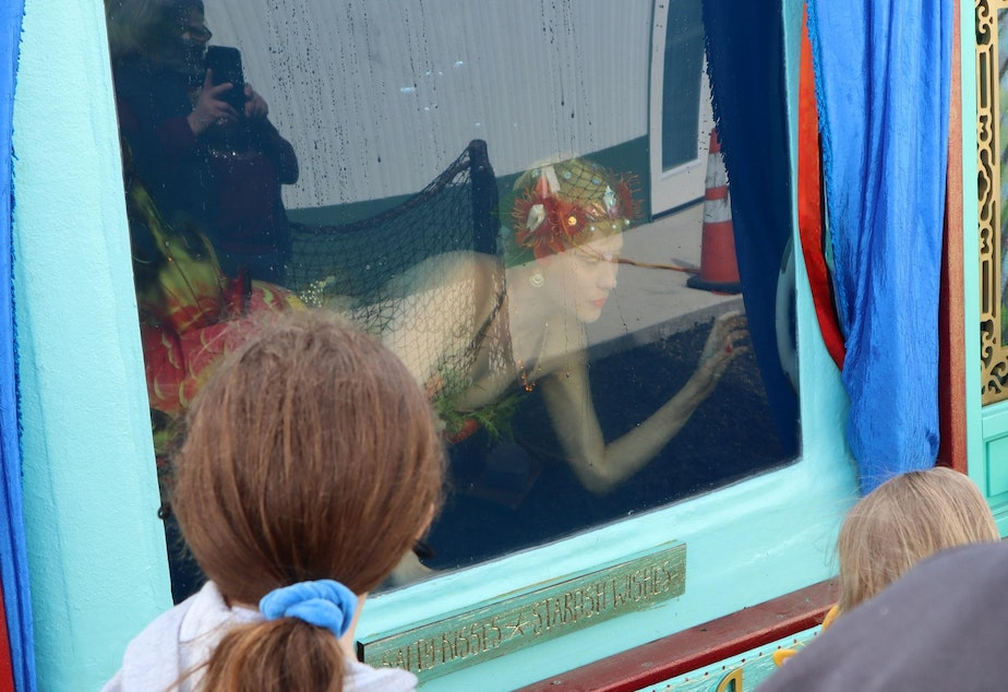 caption: Una the Mermaid mesmerized youngsters who flocked to her traveling show tank, which was parked beside the new museum.