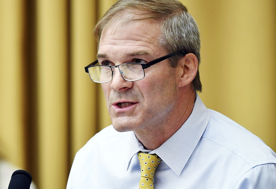 caption: Rep Jim Jordan, D-Ohio, speaks during a House Judiciary subcommittee on antitrust on Capitol Hill.