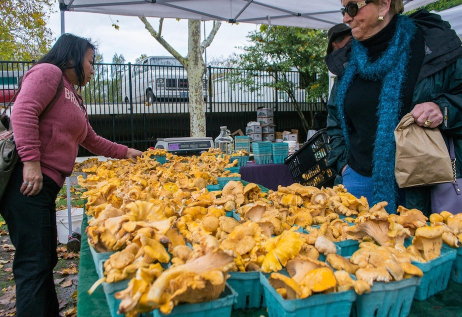 caption: Pacific golden chanterelles at the Eugene Saturday Market in the fall of 2013.