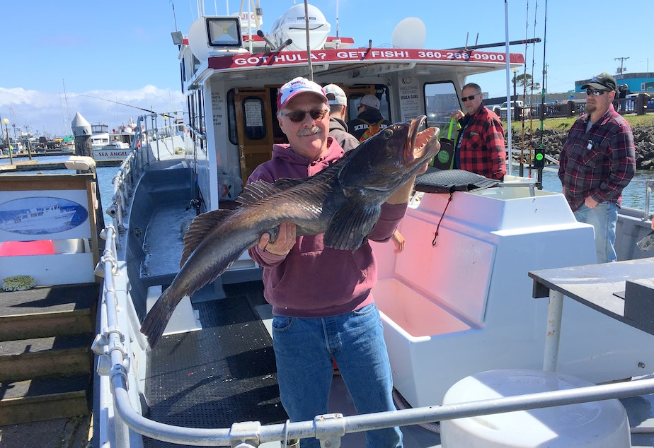 Charter captain Steve Westrick with a big lingcod a client caught on Easter weekend.