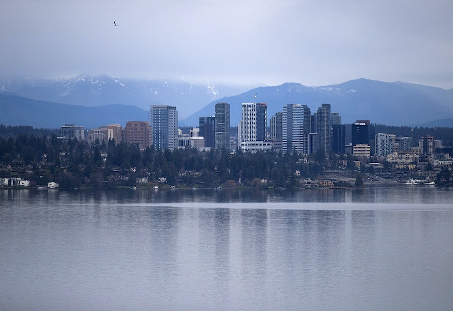 caption: Bellevue is shown on Thursday, January 17, 2019, from the Madrona neighborhood in Seattle.