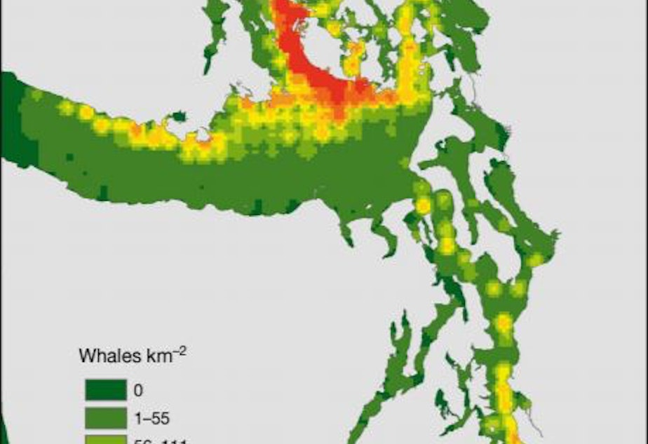 A heat map of where southern resident orcas have spent the most time in the Salish Sea over the past four decades.