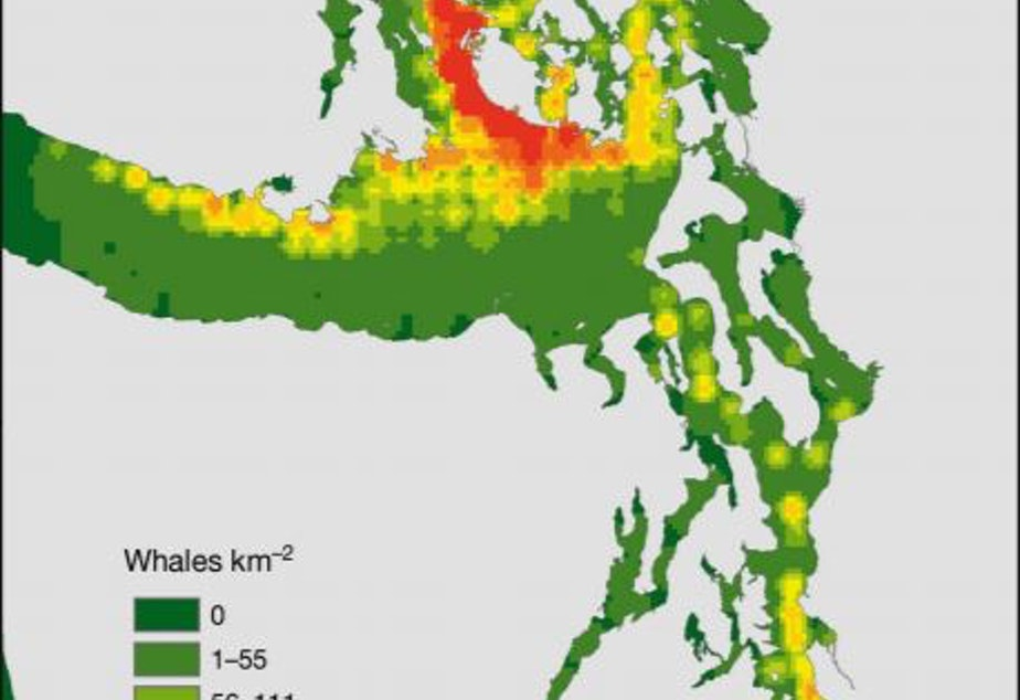 caption: A heat map of where southern resident orcas have spent the most time in the Salish Sea over the past four decades.