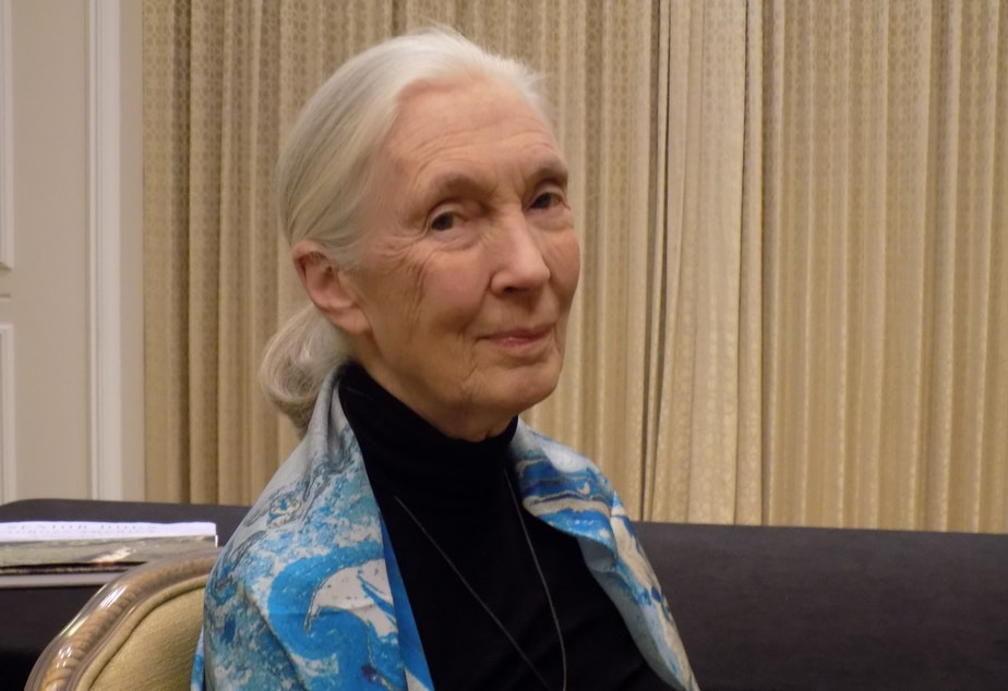 Jane Goodall at a Seattle Foundation event in October, 2017.