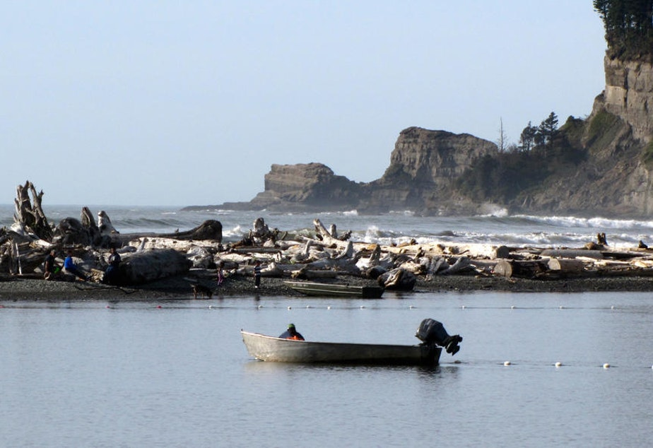 A Quinault tribal fisherman brings up his nets near the mouth of the river. Tribal families have worked the same fishing grounds along this river for generations.