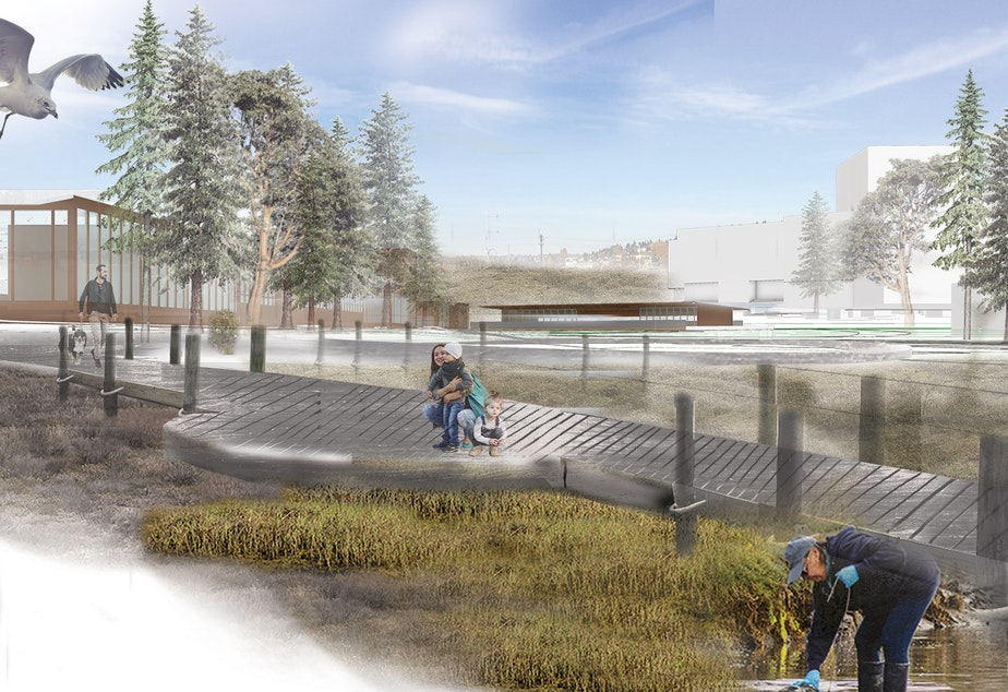caption: Tidal estuary at the south end of a one mile long green space in Seattle's proposed new neighborhood.
