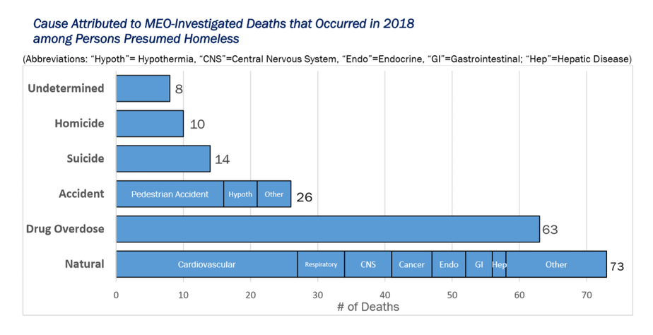 caption: King County homeless deaths in 2018 by cause.