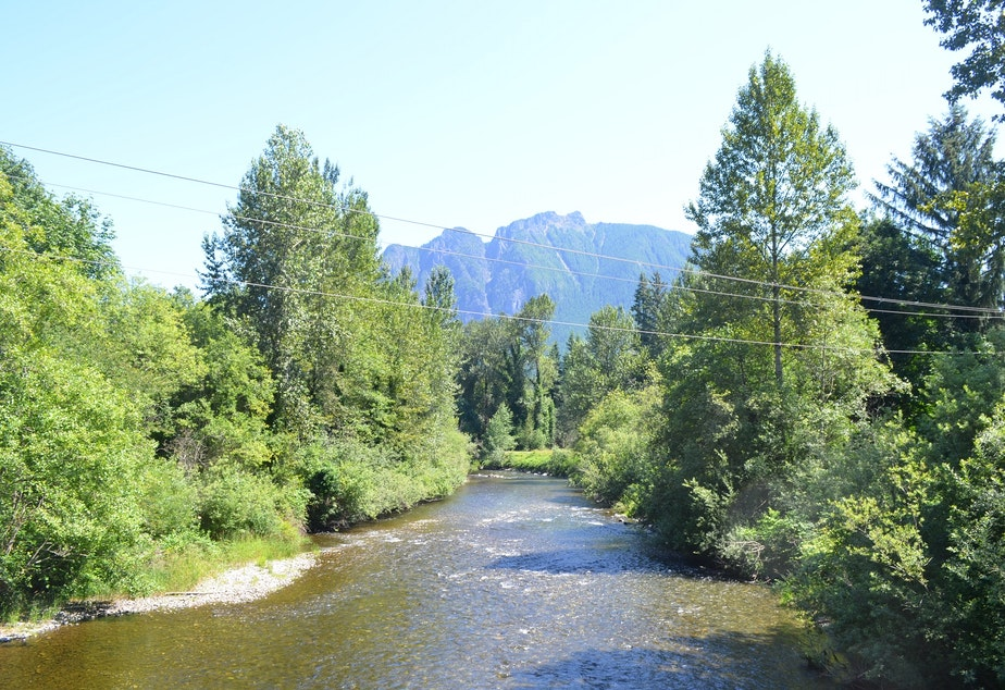 The Snoqualmie River is lower than usual this summer, which doesn't bode well for salmon or humans.