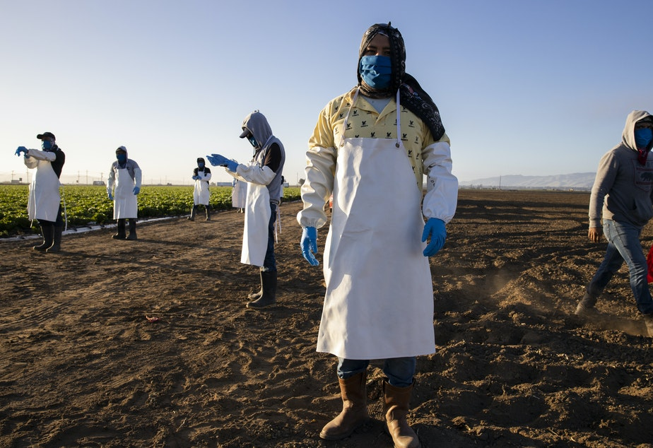 caption: Before massive wildfires broke out in California, farmworkers already had to take extra precautions for COVID-19. Now they must worry about dangerous air from wildfires. In this photo, farmworkers arrive early in the morning to begin harvesting on April 28 in Greenfield, Calif.