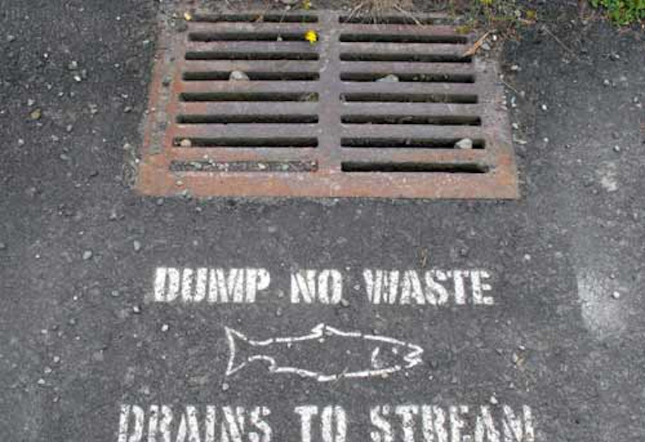 Drain stencil, Broadview neighborhood in northwest Seattle.  Part of an effort by Seattle Public Utilities and creek advocates to protect water quality in the urban streams.