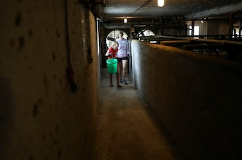 Eve Clark, 10, and Maggie Berry, 17, help with chores at Vision Aire Farms. They are seen in the barn, adjacent to the milking parlor.