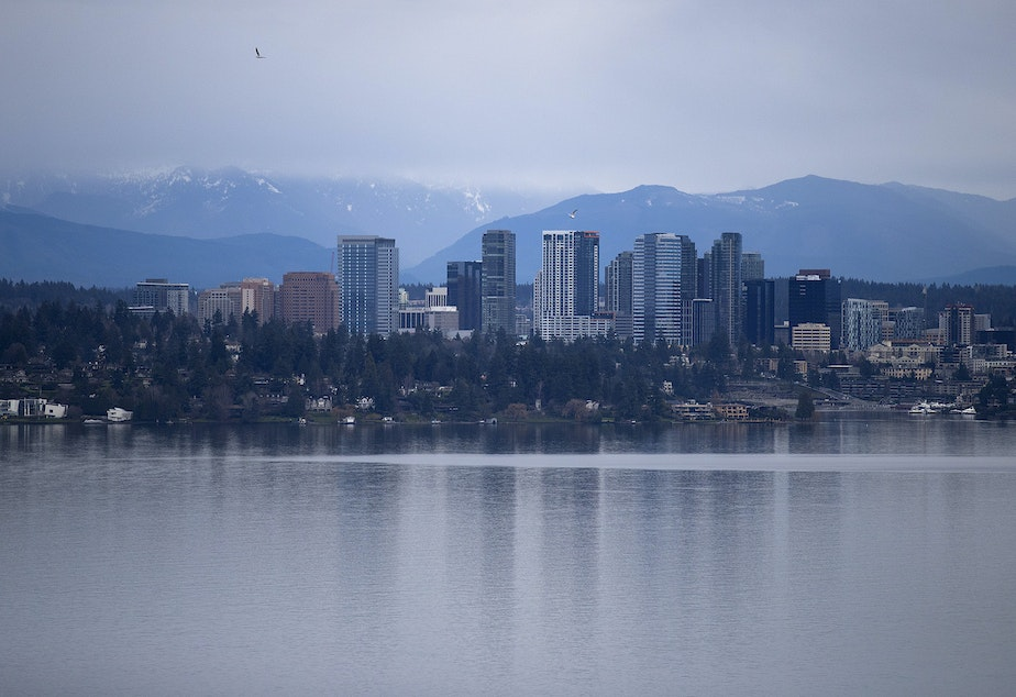 Bellevue is shown on Thursday, January 17, 2019, from the Madrona neighborhood in Seattle.