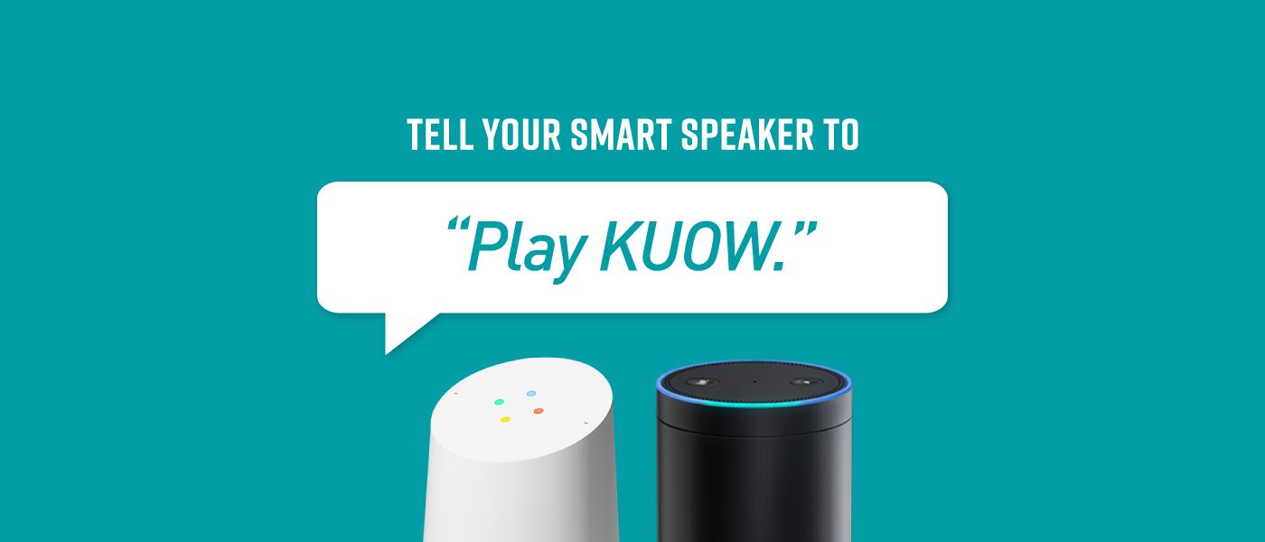 Smart Speaker Webpage V2 12